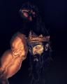 Omnadren - zdjęcie